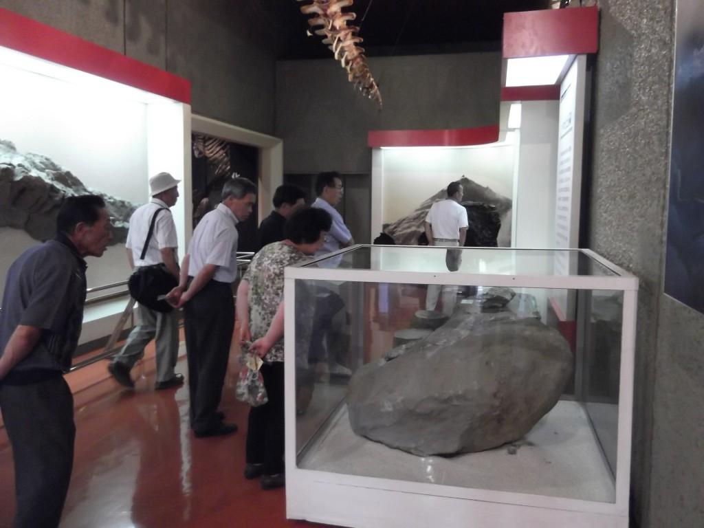 いわき市石炭・化石館を見学する参加者